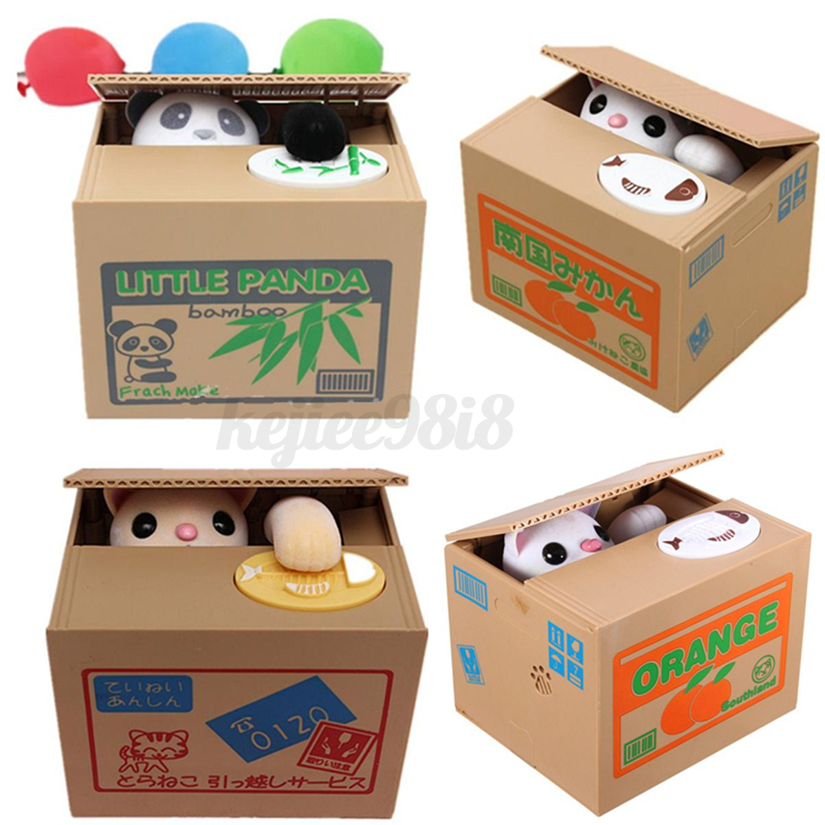 Cat In Gift Box With Lid On Head