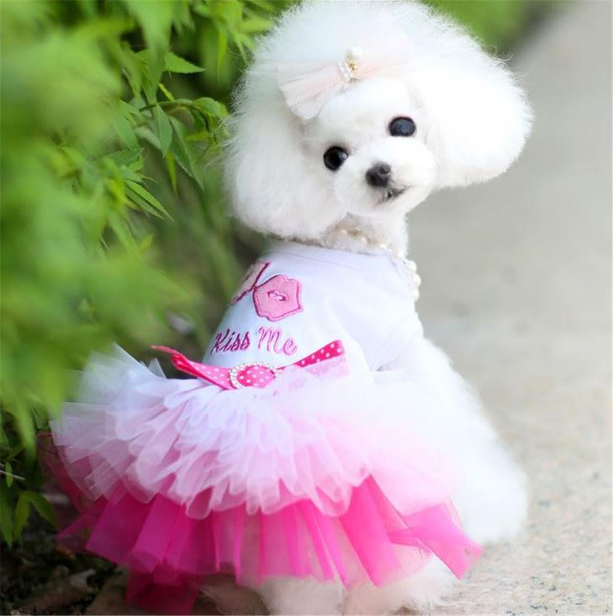 Pet Puppy Dog Cat Bowknot Dots Clothes Tutu Lace Skirt Dress Sleeveless Braces