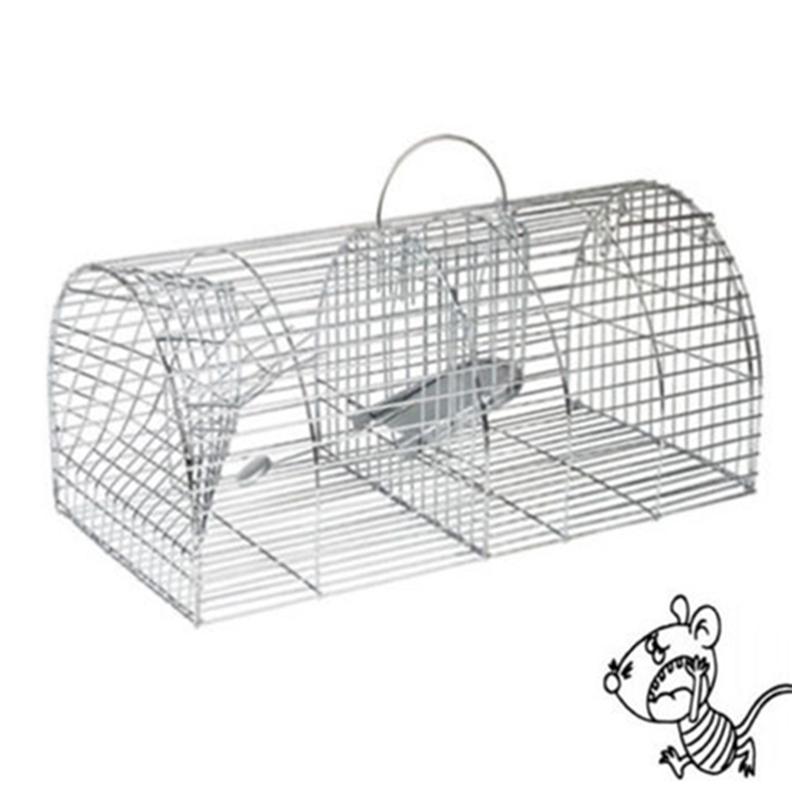 Como atrapar una rata good cmo atrapar a un ratn que - El mejor veneno para ratones ...