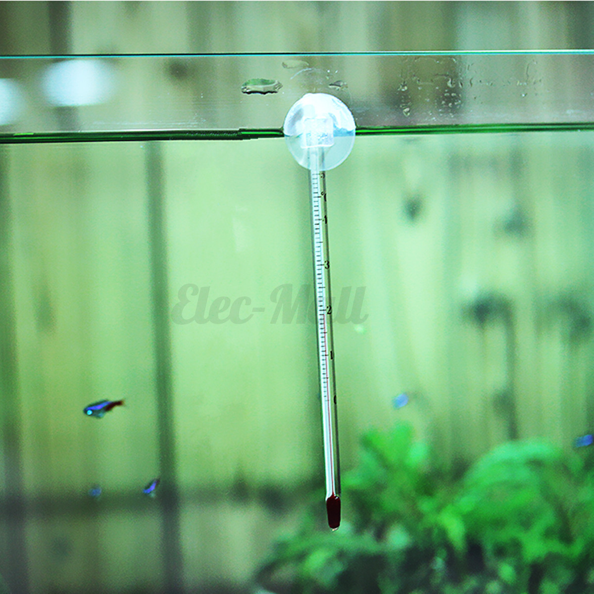 Glass aquarium thermometer with suction cup fish tank for Fish tank temperature