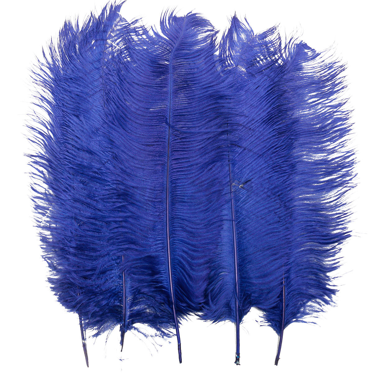 5pcs 20 22 39 39 length real large ostrich feathers for craft for Where can i buy feathers for crafts