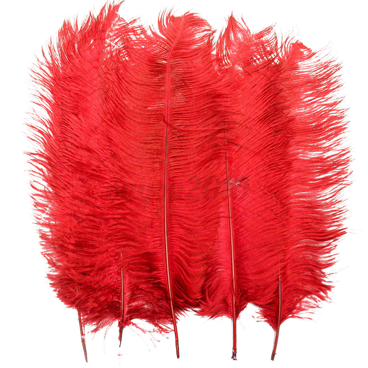 5pcs 20 22 39 39 length real large ostrich feathers for craft for Where to buy craft feathers