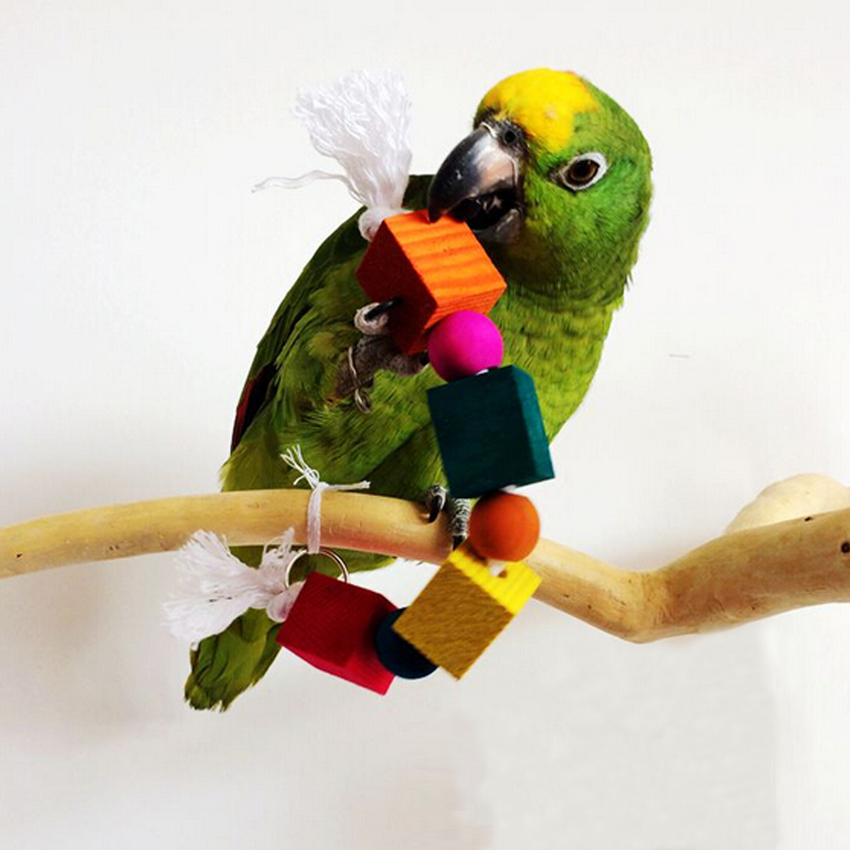 Colorful Swing Bird Toy Parrot Rope Harness Cage Toys Parakeet Cockatiel Budgie Ebay