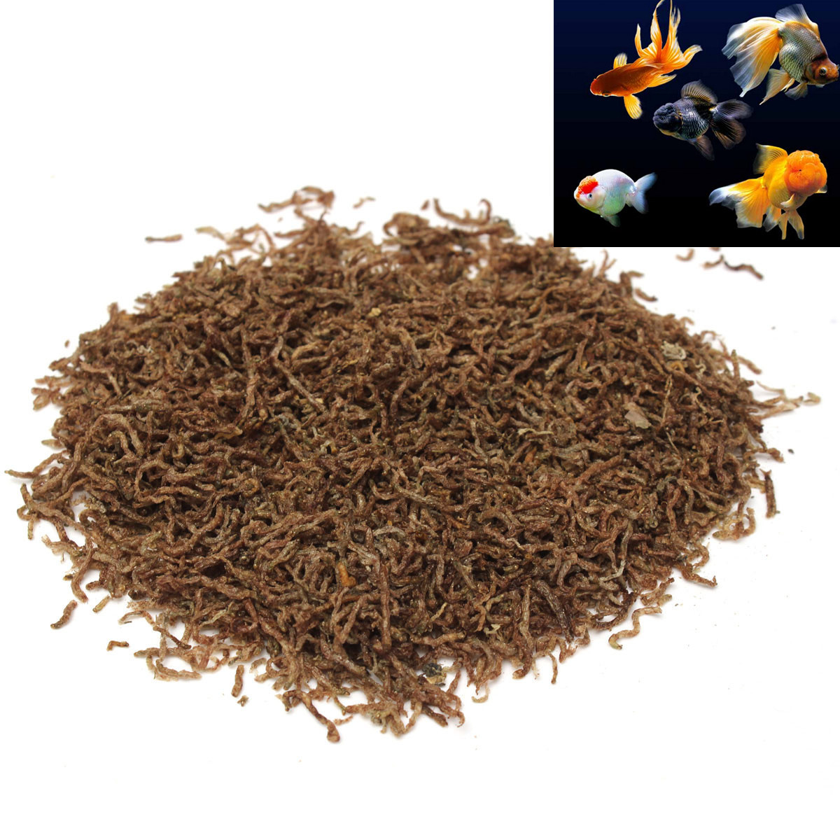 Is Freeze Dried Blood Worm Food Good For Fish