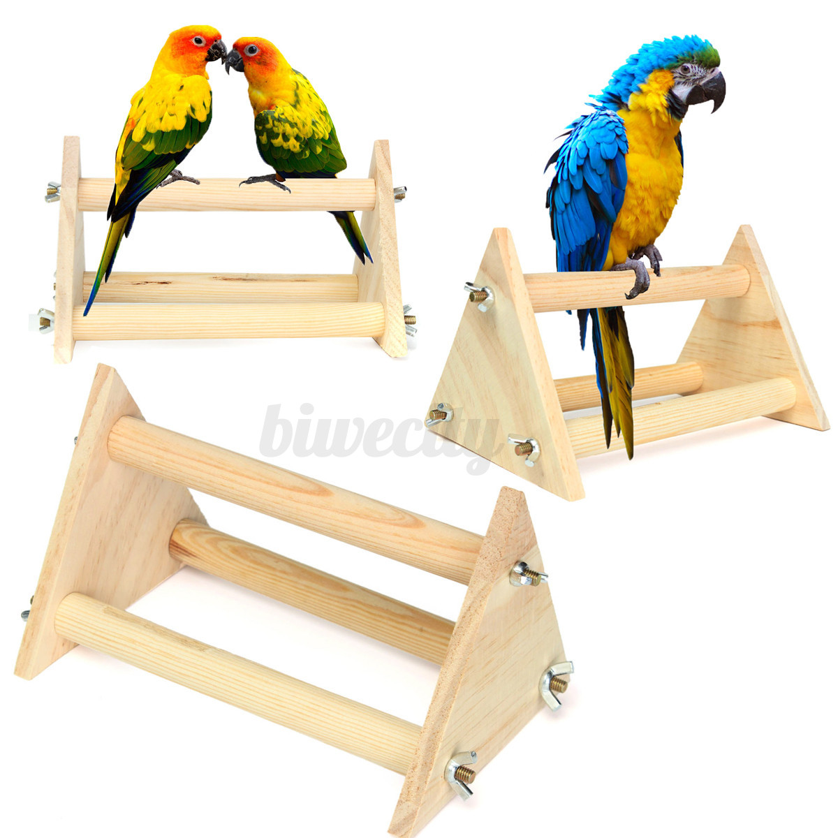 Very Impressive portraiture of Details about Wooden Parrot Bird Perch Stand Top Rack Play Funny Toys  with #C5A406 color and 1200x1200 pixels