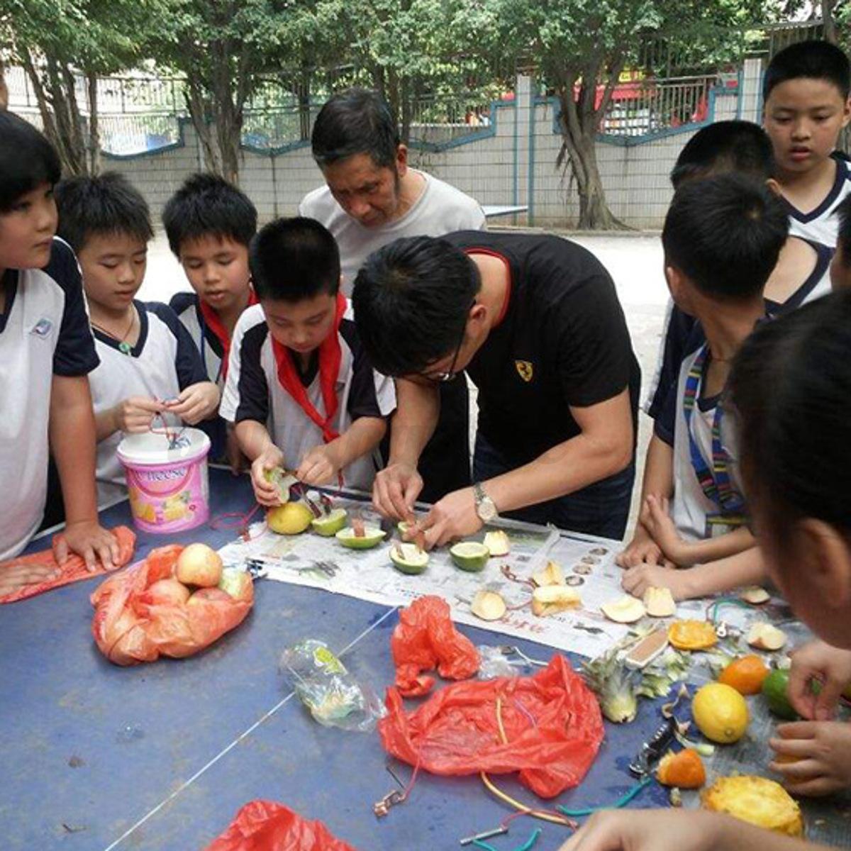 1set Children Bio Energy Science Kit Potato Fruit Supply Electricity Experim HF