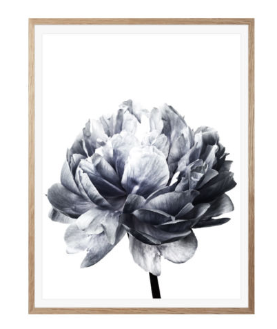 Grau pinke blume leinwand kunst wand poster moderne for Wand kunst wohnzimmer