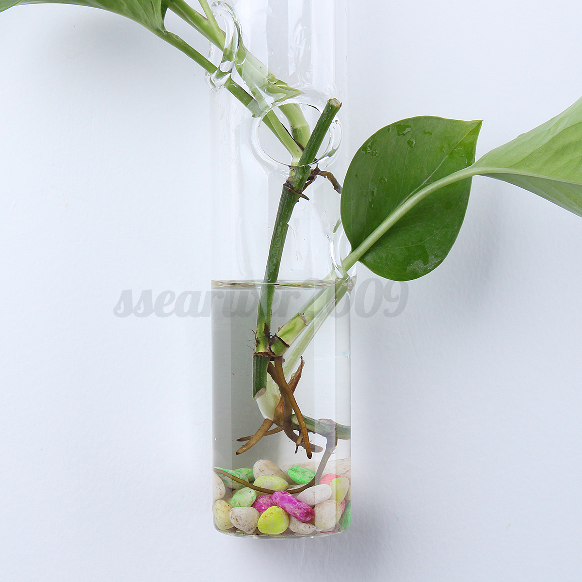 Wall hanging flower vase terrarium container plant holder for Diy wall plant holder
