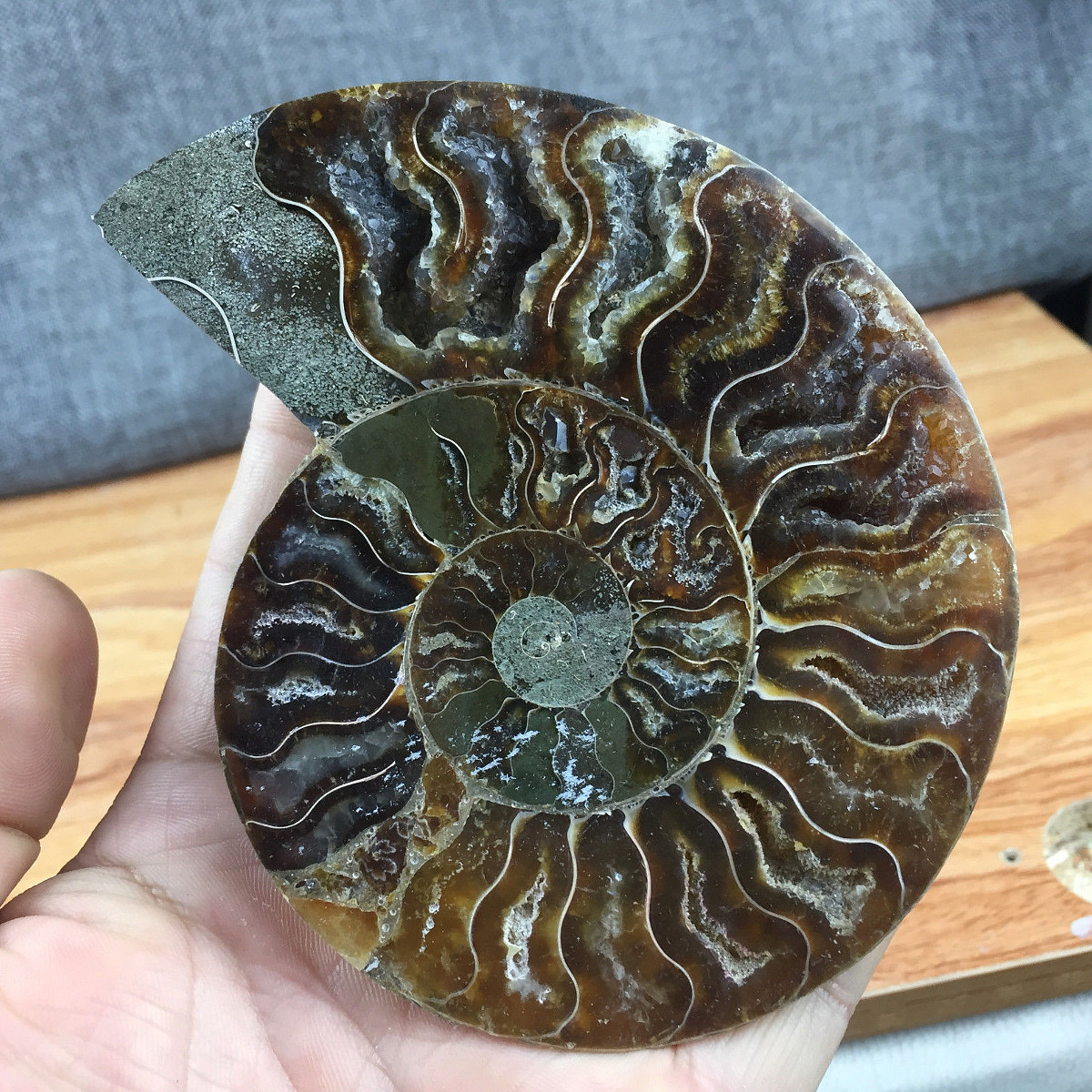 1pc-Large-12cm-Natural-Ammonite-Fossil-Sea-Conch-Crystal-Specimen-Slice thumbnail 2
