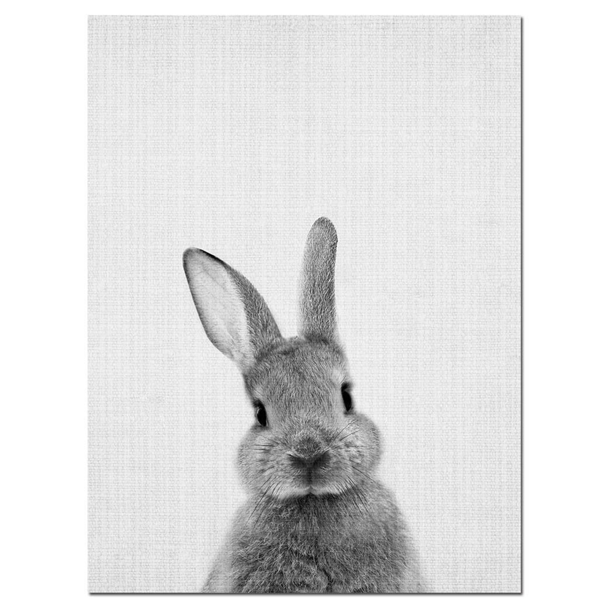 Modern Cute Rabbit Canvas Painting Wall Art Print
