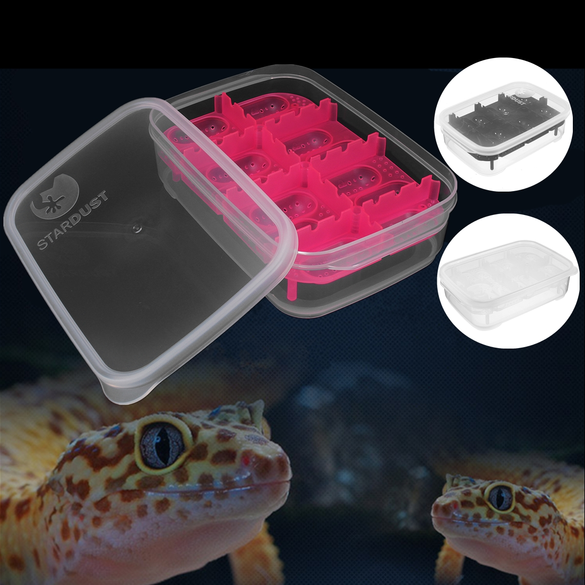 14 grid reptile eggs incubator tray lizard gecko snake bird hatcher box case uk ebay. Black Bedroom Furniture Sets. Home Design Ideas