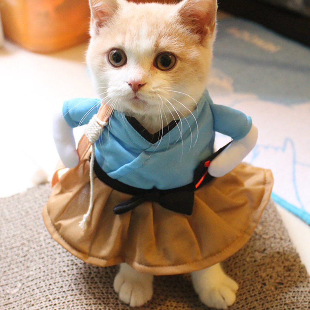 Cat-Dog-Tops-Clothes-Costume-Cool-Christmas-Halloween-Costume-Pet-Clothes thumbnail 5