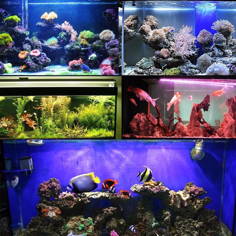 Led rgb acquario luce pesci piante 25 35 45 55cm casa fish tank telecomando 220v ebay - Acquario per casa ...