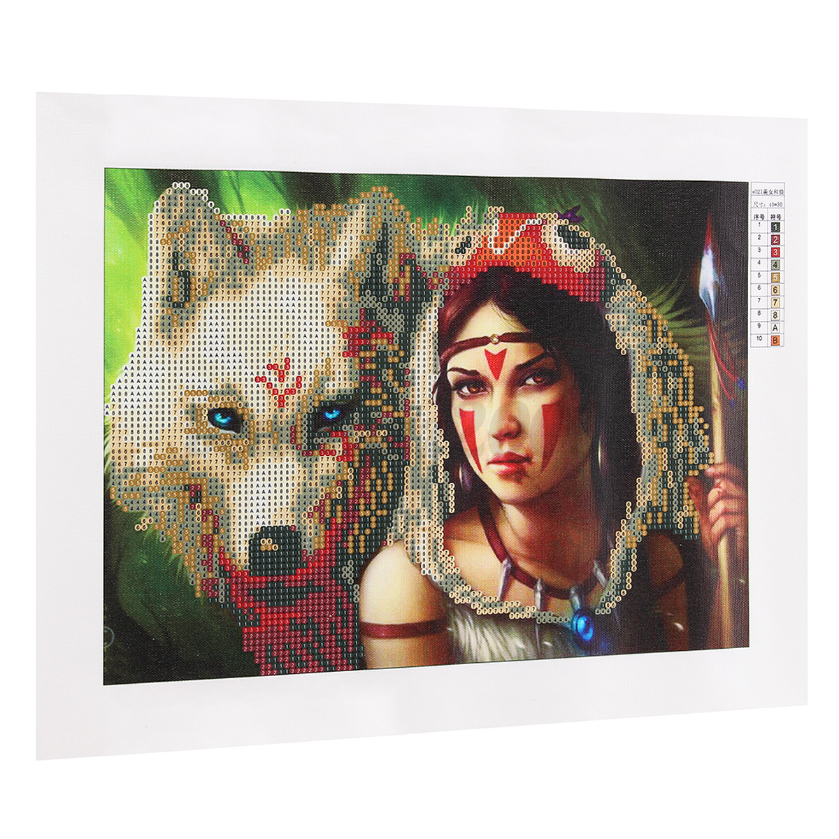 DIY-5D-Diamond-Painting-Wolf-Beauty-Tribe-Girl-Embroidery-Cross-Stitch-Decor-NEW